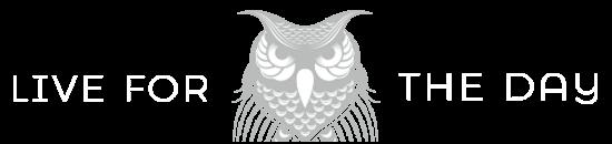 hero-owl-sunspiration-FINAL